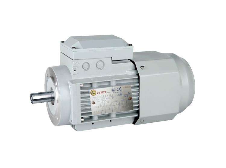 三相变频电机 VEMTE三相异步电机