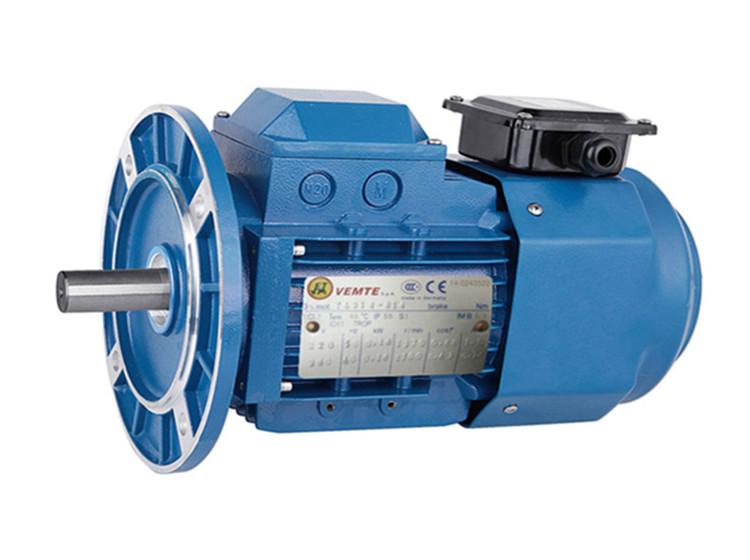 YVP变频电机 VEMT三相异步电机