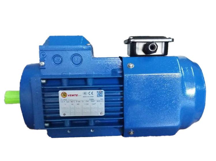 三相变频电机 VEMT三相异步电机