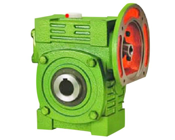 WPWDK减速电机